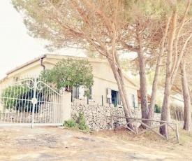 Villa Pulicaria